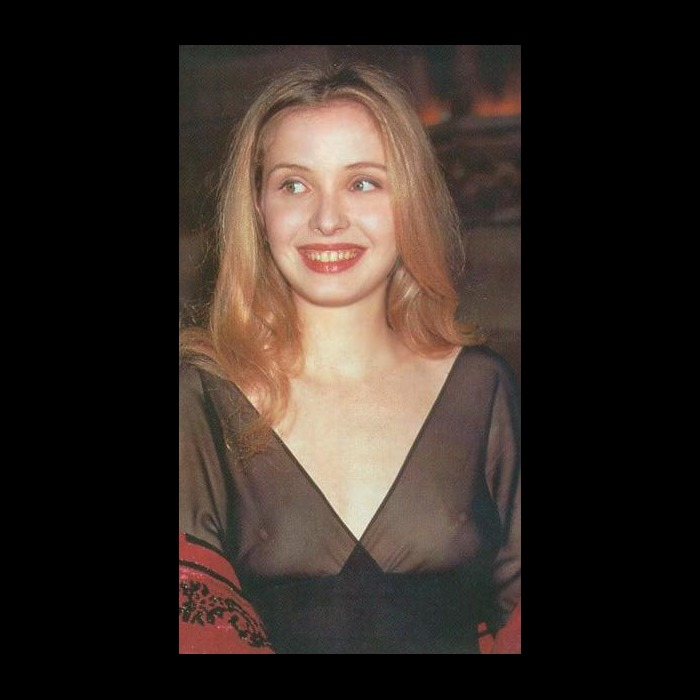 Julie Delpy in see through dress
