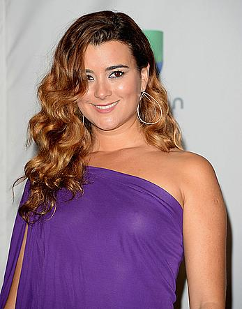 Cote de Pablo pokies at The 14th Annual Latin GRAMMY Awards in Las Vegas