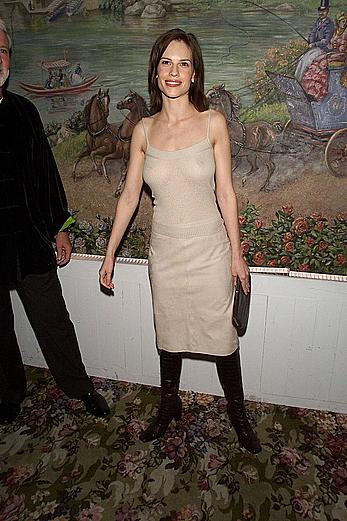 Hilary Swank shows boobs throught transparent dress